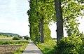 Wanderweg bei Rohrau - panoramio.jpg