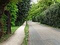 Warren Road - geograph.org.uk - 1861355.jpg