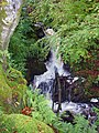 Waterfalls on Cnocan Burn - geograph.org.uk - 265349.jpg