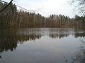 Weissensee Sebalder Reichswald f se keichwa.jpg