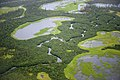 Wetlands along the Kobuk River (8029768905).jpg