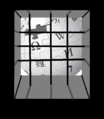 Wiki behind bars.png