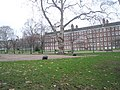 Winter at Gray's Inn (1) - geograph.org.uk - 1656198.jpg