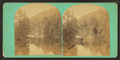 Wissahickon Creek at Valley Green, from Robert N. Dennis collection of stereoscopic views.png