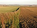 Wolds' Fields in Autumn Sun - geograph.org.uk - 285381.jpg