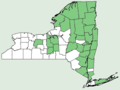 Woodsia ilvensis NY-dist-map.png
