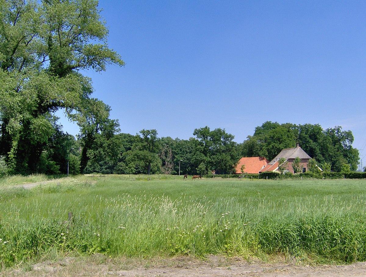 Landschap Wikipedia