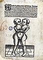 Wunderbarliche Geburt 1511.jpg