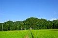 Yonezawa Rice field (20394417866).jpg