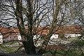 Zámek MLÁZOVY (018).jpg