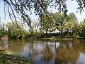 Zamozhnenskyi Landscape Reserve (05.05.19) 02.jpg