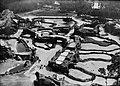Zoo de Vincennes 1934 (1).jpg