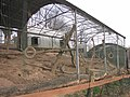 Zoo des 3 vallées - 2015-01-02 - i3376.jpg