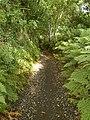 """Ebenezer"" unmetalled road, near Laurel Bank. Isle of Man. - geograph.org.uk - 46715.jpg"