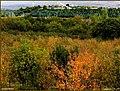 (((دیدنیهای پاییز مراغه))) - panoramio (4).jpg