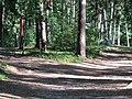 (PL) Polska - Warmia - Las Miejski w Olsztynie - The City Forest in Olsztyn (28.VIII.2012) - panoramio (30).jpg