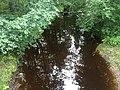 Большая Уя (река, впадает в Онежское озеро) 2.jpg