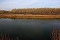 Вид на правый берег Урала - panoramio (5).jpg