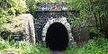 Дидинский тоннель.jpg