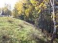 Долина р. Миасс (дер. Прохорово) - panoramio (8).jpg