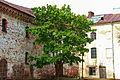 Замок-крепость (дерево).jpg