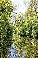 Зеркала в Трикратском лесу.jpg