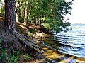 Ильменское озеро. - panoramio (4).jpg