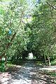 Кам'янець-Подільський парк IMG 8246.jpg