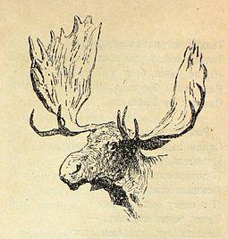 Лось. Рисунок Ф. Ремингтона
