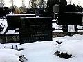 Могила Героя Советского Союза Евгения Кима.jpg