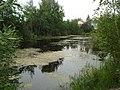 Озеро в СНТ Горизонт 3 - panoramio.jpg