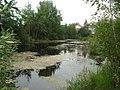 Озеро в СНТ Горизонт 4 - panoramio.jpg