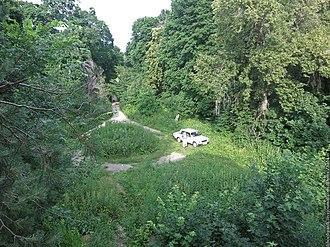 Tatishchevsky District - Polchaninovsky homestead park, Tatishchevsky District