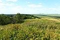 Слудные горы. Вид с высоты 334,2 в северном направлении - panoramio.jpg