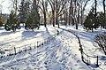 Сонячний, зимовий день.jpg