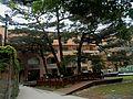 台灣大學 Taiwan University - panoramio.jpg