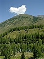 喀纳斯山顶的白云 - panoramio.jpg