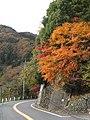 奥多摩湖の紅葉-02 - panoramio.jpg