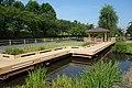 結城水辺公園、結城城の堀跡か - panoramio.jpg