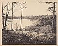 -Civil War View- MET DP248316.jpg
