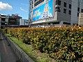 01763jfQuezon Avenue Shell Jollibee MRT Stations NIA Road Eton Centris EDSA roadfvf 13.jpg