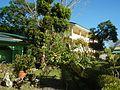 09556jfAlexis G. Santos National High School Liciada, Bustos Bulacanfvf 02.jpg