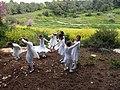 11-מערת הפלמח משמר העמק צילום מתי חלילי (10) פעילות הילדים ליד המערה.jpg