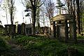 1512viki Cmentarz żydowski przy ul. Lotniczej. Foto Barbara Maliszewska.jpg