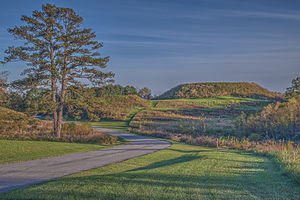 Platform mound - Temple Mount at Ocmulgee National Monument