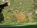18th green, Mortonhall Golf Course - geograph.org.uk - 604774.jpg