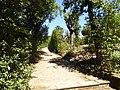 2017-06-20 Giardino di Boboli 77.jpg