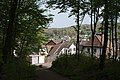 20200413State forest Saarbrücken4.jpg