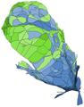 2020 新竹縣總統選舉各里得票人口變形圖.png