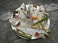 2064Bakoko and Malakapas fishes and houseflies 03.jpg